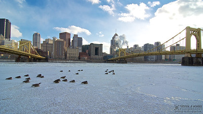 Frigid air from the North Pole dropping temperature to -9 Deg F (-22 Deg C), creating a beautiful Frozen Pittsburgh landscape !!
