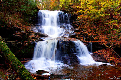 Tuscarora Falls, Ricketts Glen State Park